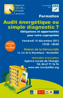 Audit énergétique ou simple diagnostic ?