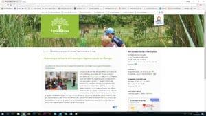 Copie d'écran de l'encart sur les Eco'minots