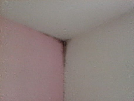 Résoudre les problèmes d'humidité d'un logement